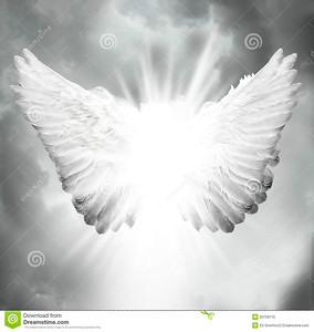 //www.dreamstime.com/royalty-free-stock-photo-angel-wings-image20726115