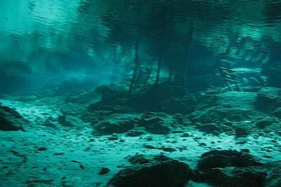 Mexico Cenote Diving Video