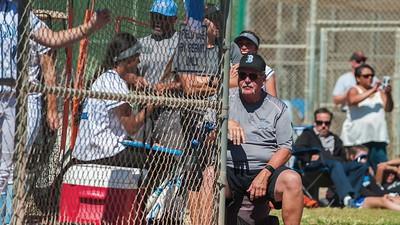 2017 Buena Softball -