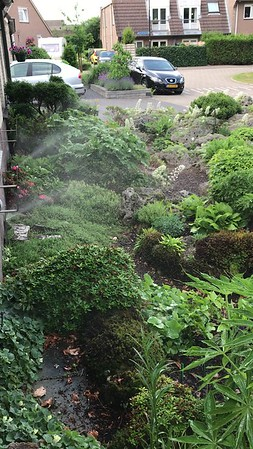 Mist system for peat bed