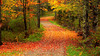 <font color=yellow><U><B><font color=orange>Glimpses of Fall</font></B></U></font>  2011. A good chunk of NorthEast was affected by Hurricane Irene and the subsequent floods. Consequently, the fall colors this year were more muted and less vibrant than usual. Yet, they dazzled in small pockets here and there. Tried to capture a few of those - primarily from Maine, but some snippets from Virginia, Vermont, and Massachusetts as well.  Learning more and more about capturing and editing videos. Comments/Suggestions appreciated.