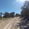 Cedro Peak (4-20-2012)