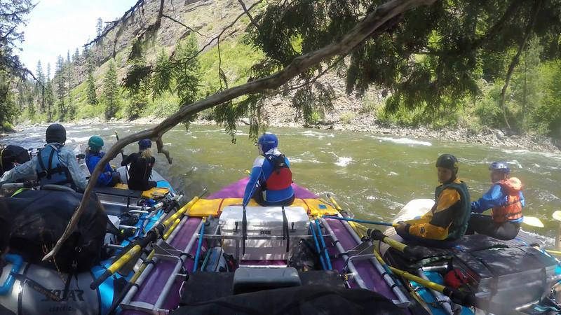 2015 Selway - Goat Creek Rapid