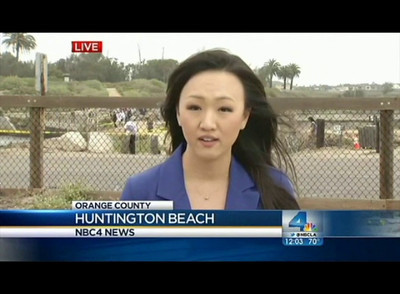 Bolsa Chica Dolphin Story with my interview.