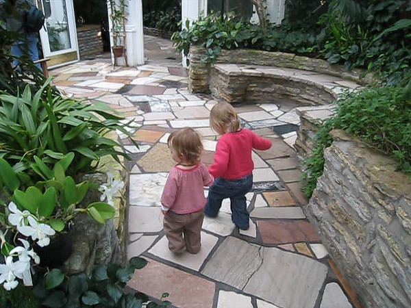 """Lillian and Eve walked all around the Conservatory like this.  Lillian would ask Eve """"More walk?"""" and they would take each other's hands and set off.<br /> February 10, 2009"""