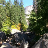 Yosemite Natioanl Park