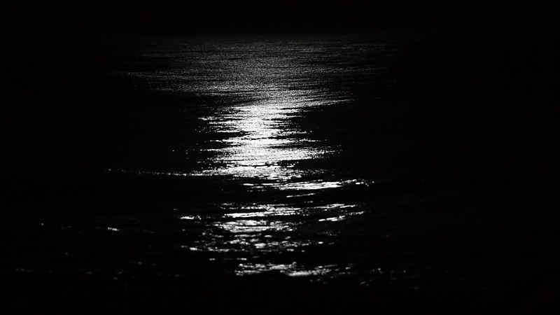 Moon Light Dancing On The Ocean 1/12/20