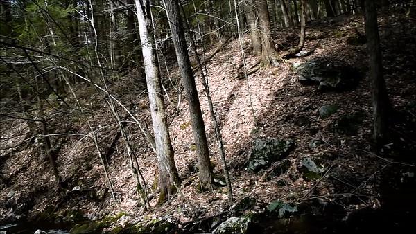 Cascade Spring Flow w Filmstro