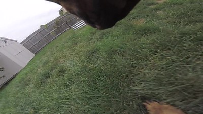 Keno and the GoPro 5 Session