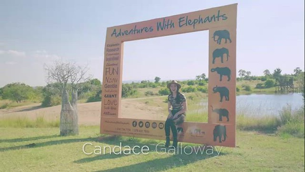 Candace Adventures with Elephants_mp4