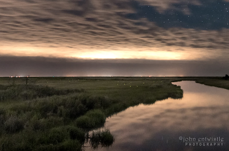 Dancing Fireflies Over Marshlands 6/26/17
