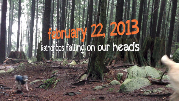 FEBRUARY 22nd 2013 RAINDROPS ARE FALLING ON OUR HEADS
