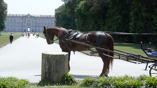 Caserta, Naples - Versailles of the South
