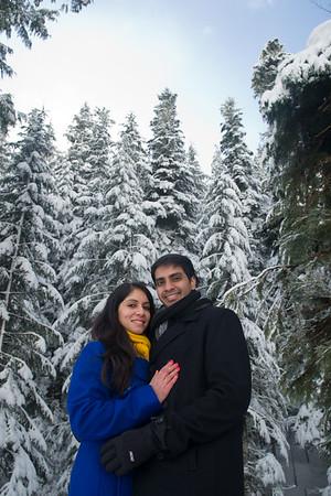 Vidushi & Krishna Engagement Photos