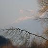 Les perchoirs nocturnes à cormoran.<br /> A l'arrière plan, la Chartreuse.