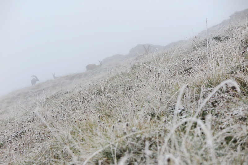 Premières neiges d'automne sur la Vanoise