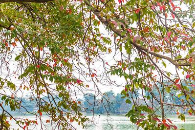 Hanoi - Hoàn Kiếm