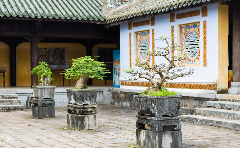 Hoàng Thành Thăng Long 5