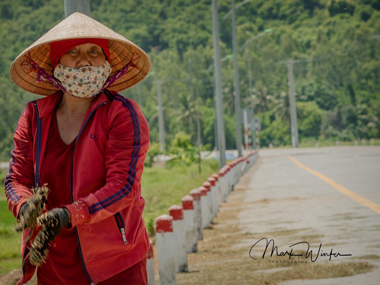 Woman Sifting Rice, Nha Trang