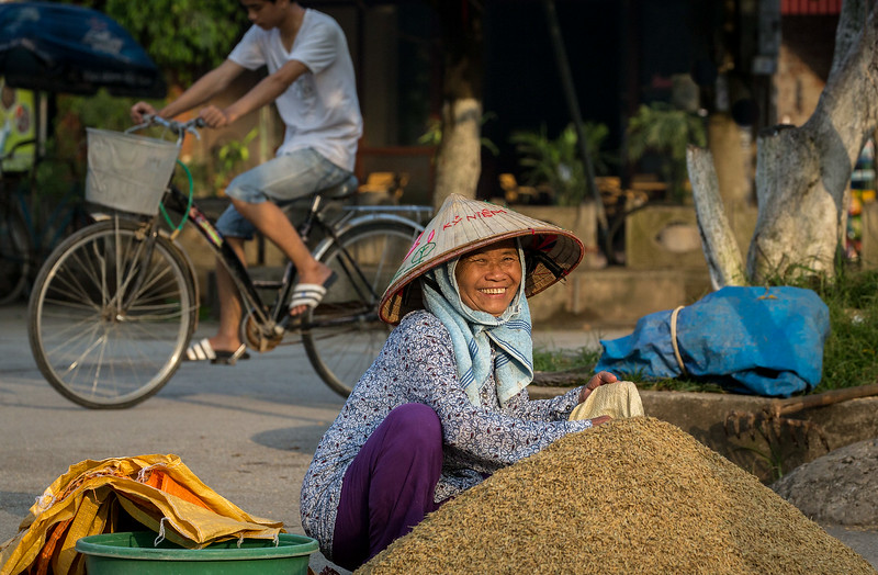 Tam Coc, Ninh Binh, Vietnam: at the end of a day of drying, the rice must be collected for storage overnight.