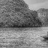 Two women in rowboat sell fruit among tourist boats.  Halong Bay