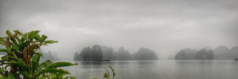 Misty, but hauntingly beautiful in the morning.