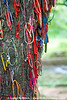 Gifts and prayer bracelets left on the Killing Tree against which executioners beat children to death because they didn't want to waste a bullet.