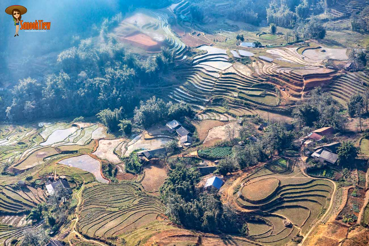 ข้อมูล เที่ยวเวียดนาม เวียดนาม Vietnam Guide ไร่นาขั้นบันได ที่ ซาปา