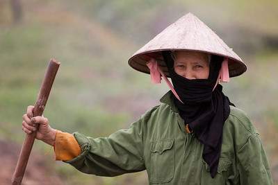 A farmer working in her rice fields in Vietnam