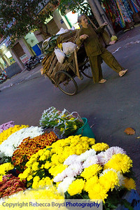 A woman pulls a cart of wares by a flower market in Vietnam
