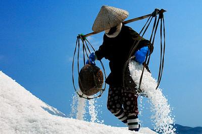 Vietnam: The Sodiumites