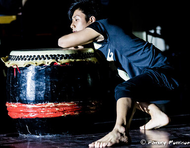 Cracking-Bamboo-3543