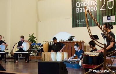Cracking_Bamboo-3562