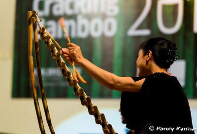 Cracking_Bamboo-3596