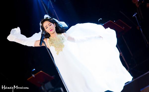 Trinh Cong Son 13 Nam Nho Concert in Crescent Park