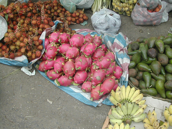 Dragon Fruit For Sale, Hoi An, Vietnam