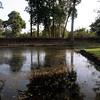 184 Banteay Srei, Angkor