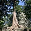 169 Prah Khan, Angkor
