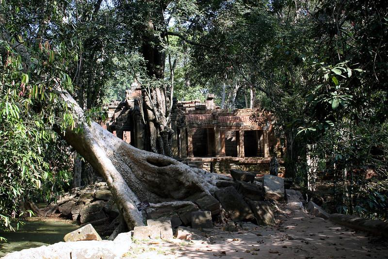 163 Prah Khan, Angkor, Cambodia