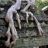 172 Prah Khan, Angkor
