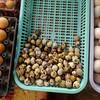 На рыбном рынке всегда продаются яйца разных видов - куриные, перепелиные, утиные.
