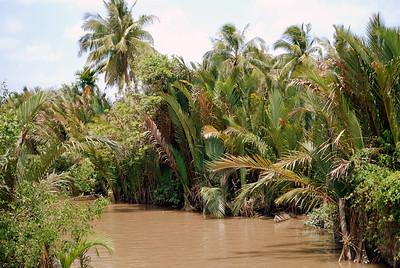 In the Mekong Delta, Vietnam