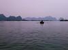 Early Morning, Rower, Cat Ba Island, Vietnam