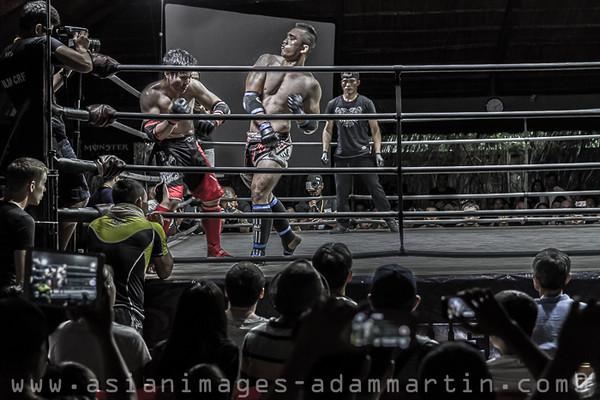 Fight Night B/W