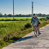 Biking through the Rice Fields