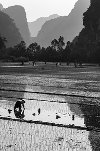vietnam, ninh binh, landscapes, mountains, karst, valleys, rice paddies