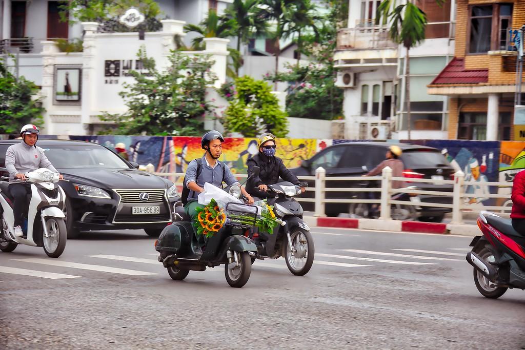 Hanoi Sunflowers
