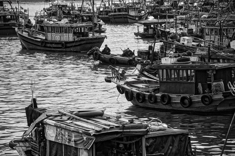 Halong Fishing Port 005