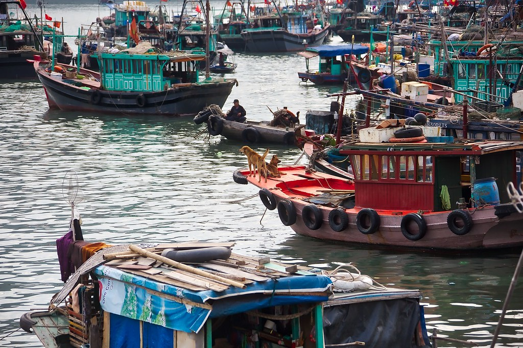 Ha Long fishing boat 003