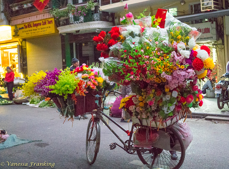 Flowers! Everywhere flowers during Lunar New Year, or Tet.